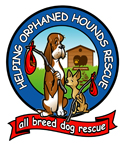 Helping Orphaned Hounds